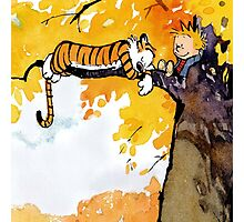 sleeping calvin and hobbes Photographic Print