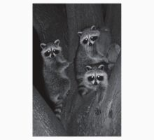Three Baby Raccoons Kids Clothes