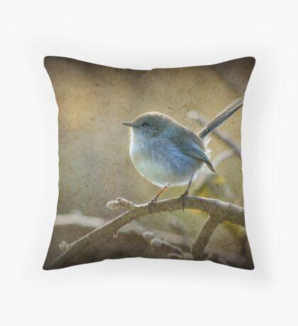 Fairy Wren - Non breeding male Throw Pillow