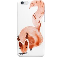 watercolor squirrel. Watercolor hand drawn brush iPhone Case/Skin