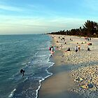 Naples, Florida  by longaray2