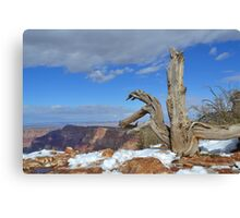 Grand Canyon 12 Canvas Print