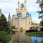 Cinderella's Castle by Dan Shiels