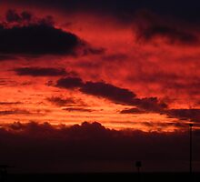Cottesloe Sunset, red by mmanni