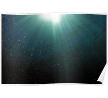 Bait Fish and Sunrays Poster