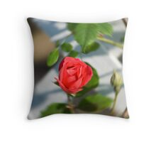 Rose with a twist Throw Pillow