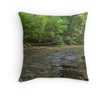 Clifty Creek #3 Throw Pillow