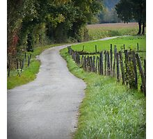 Country Lane Photographic Print