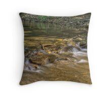 Clifty Creek #6 Throw Pillow