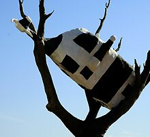 Cow up a Tree by Maggie Hegarty