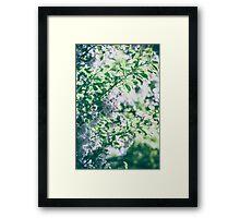 Dream Flower 11 Framed Print