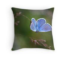 A Little Blue Throw Pillow
