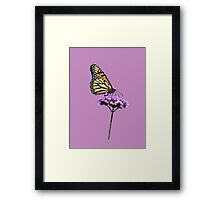 Monarch on mauve t-shirt/leggings/merchandise Framed Print