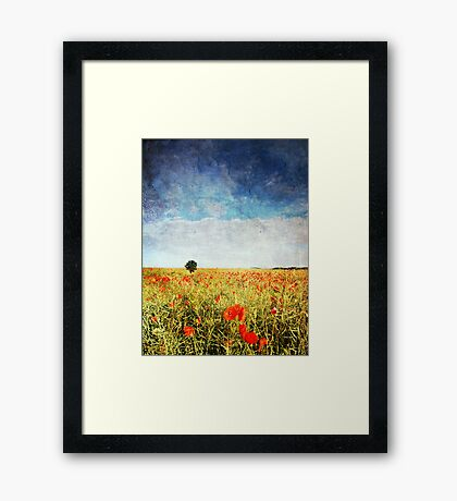 Poppy Fields - Texture Framed Print