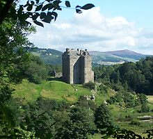 Neidpath Castle,Peebles. Scotland by mysticcatnip