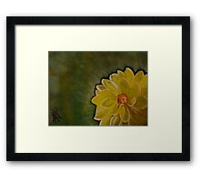 A Yellow Beauty Framed Print