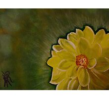 A Yellow Beauty Photographic Print