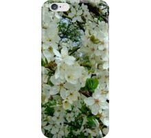 Cherry blossoms time iPhone Case/Skin
