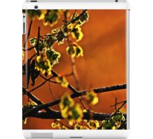 Backlit Branch iPad Case/Skin