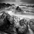 Jagged, Tarkine Coast, Tasmania by NickMonk