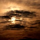 Sun by Beauty Vault Photo