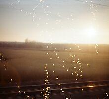 Railroad Trip by Krolikowski Art