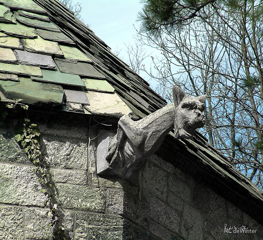 American Gargoyle by RC deWinter