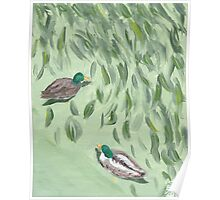 Oxide of Chromium and Ducks Poster