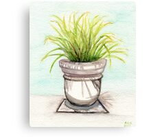Fronds Canvas Print