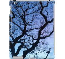 A Llansteffan eve iPad Case/Skin