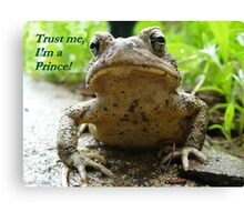 Charming In Disguise Canvas Print