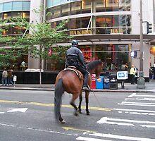 Jaywalking horse by WaleskaL