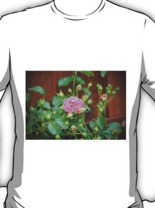 Pink Rose With Buds T-Shirt