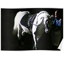 """Horse of Battle"" - ""Horse of Ballet"" Poster"