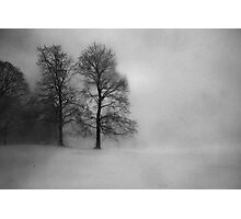 Snow Queen Photographic Print