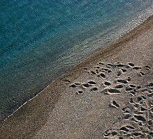 Lost steps by Barbara  Corvino