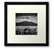 Mountain Lake Reeds I Framed Print