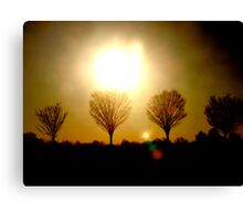 Sunsets and Silhoutte Dreams Canvas Print