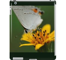 Hairstreak Butterfly Macro iPad Case/Skin