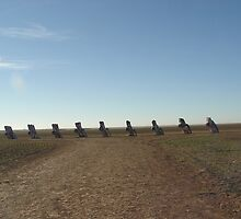 Cadillac Ranch by gailrush