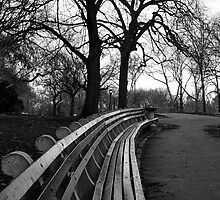 New York Central Park Bench by Carlos Restrepo