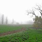 One Foggy Morning by GailD
