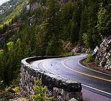 The Long and Winding Road by Rick  Bender
