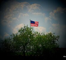 Flag of 1814 - Fort McHenry - Baltimore, MD by Lisa Taylor