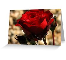 Burnt Red Greeting Card