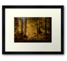 In My Haven Framed Print