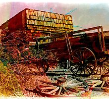 Vintage Wagon and Store by laxwings