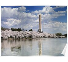 Cherry Blossoms on the Tidal Basin, Washington, D.C. Poster