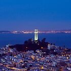 Coit Tower at Dusk, San Francisco, California by Carol M.  Highsmith