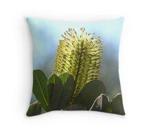 Golden Banksia Throw Pillow